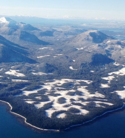Part of the Tongass National Forest, between Wrangell and Petersburg, is seen in this view from an airplane. A Senate measure calls for the state to take over some Tongass timberlands from the feds. (Ed Schoenfeld/CoastAlaska)