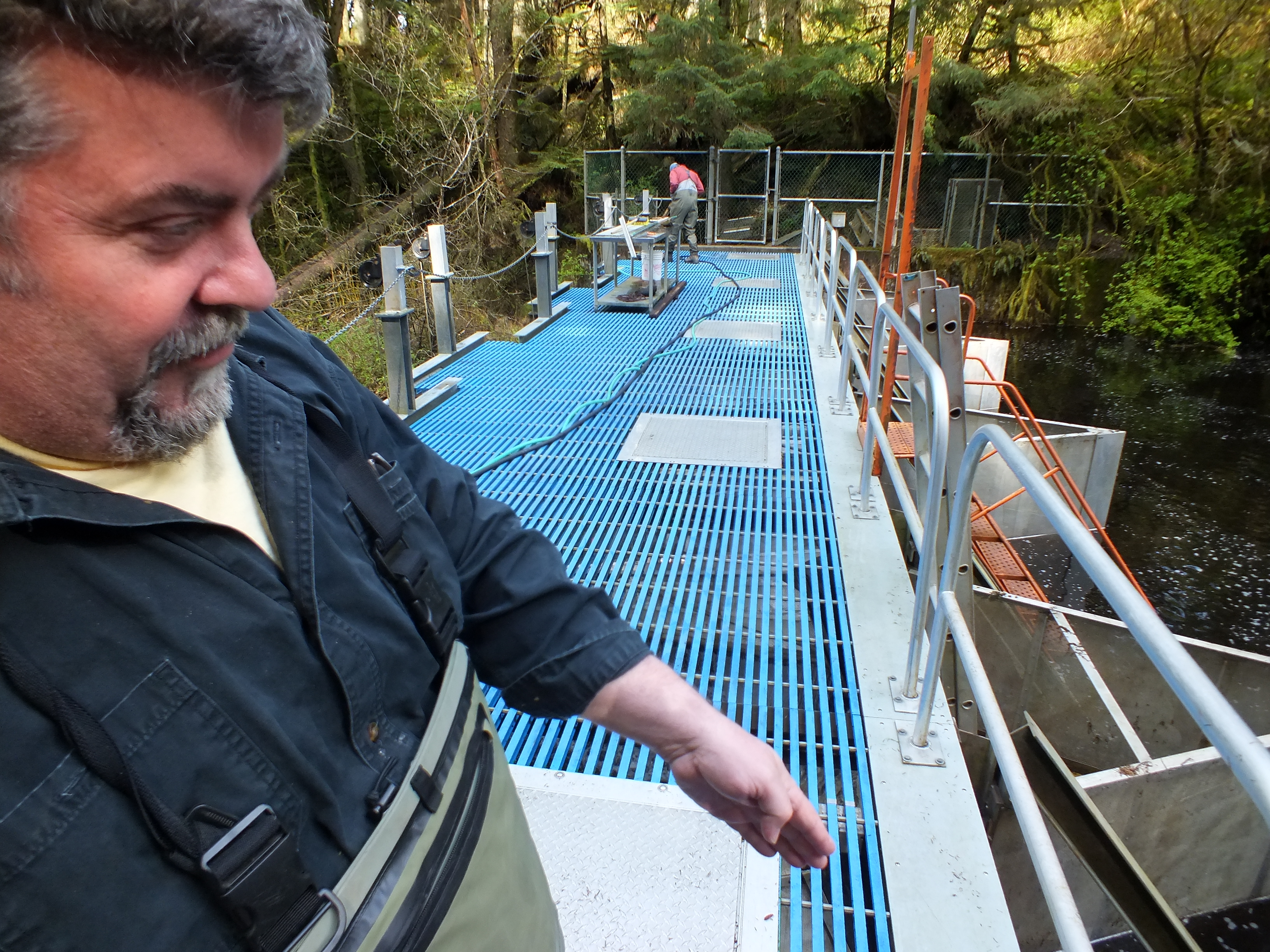 NOAA fisheries biologist John Joyce explains how different species and sizes of  out-migrating fish are routed into different tanks for hand counting at Auke Creek weir. (Photo by Matt Miller/KTOO)