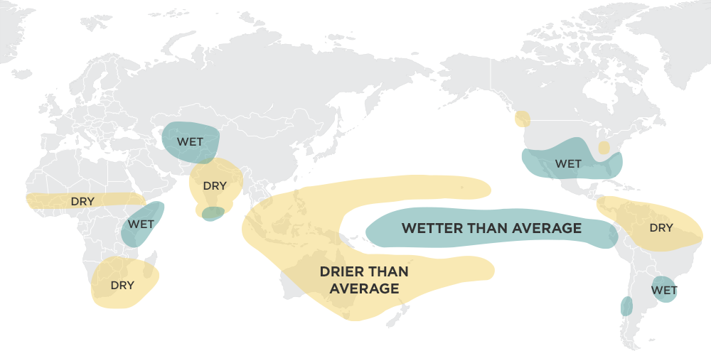 Source: Ropelewski, C.F., and M. S. Halpert, 1987: Global and regional scale precipitation patterns associated with the El Niño Southern Oscillation. Mon. Wea. Rev., 115, 1606-1626; Mason and Goddard, 2001. Probabilistic precipitation anomalies associated with ENSO. Bull. Am. Meteorol. Soc. 82, 619-638 Credit: International Research Institute for Climate and Society, The Earth Institute, Columbia University (http://iri.columbia.edu/enso/); NPR