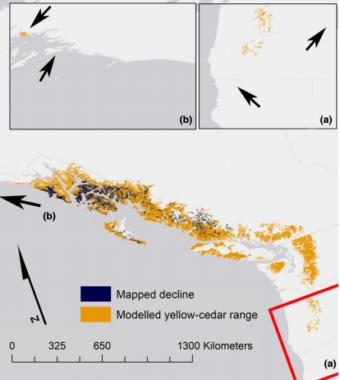 A map of yellow cedar decline. (courtesy of Brian Buma/UAS)