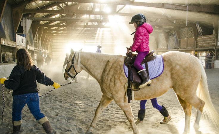 Shelly Smith leads a rider on Taiya.