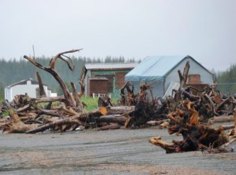 The beach fish camp at Strawberry Point is one of the areas of Yakutat where mining claims were staked. Ed Schoenfeld/CoastAlaska News.