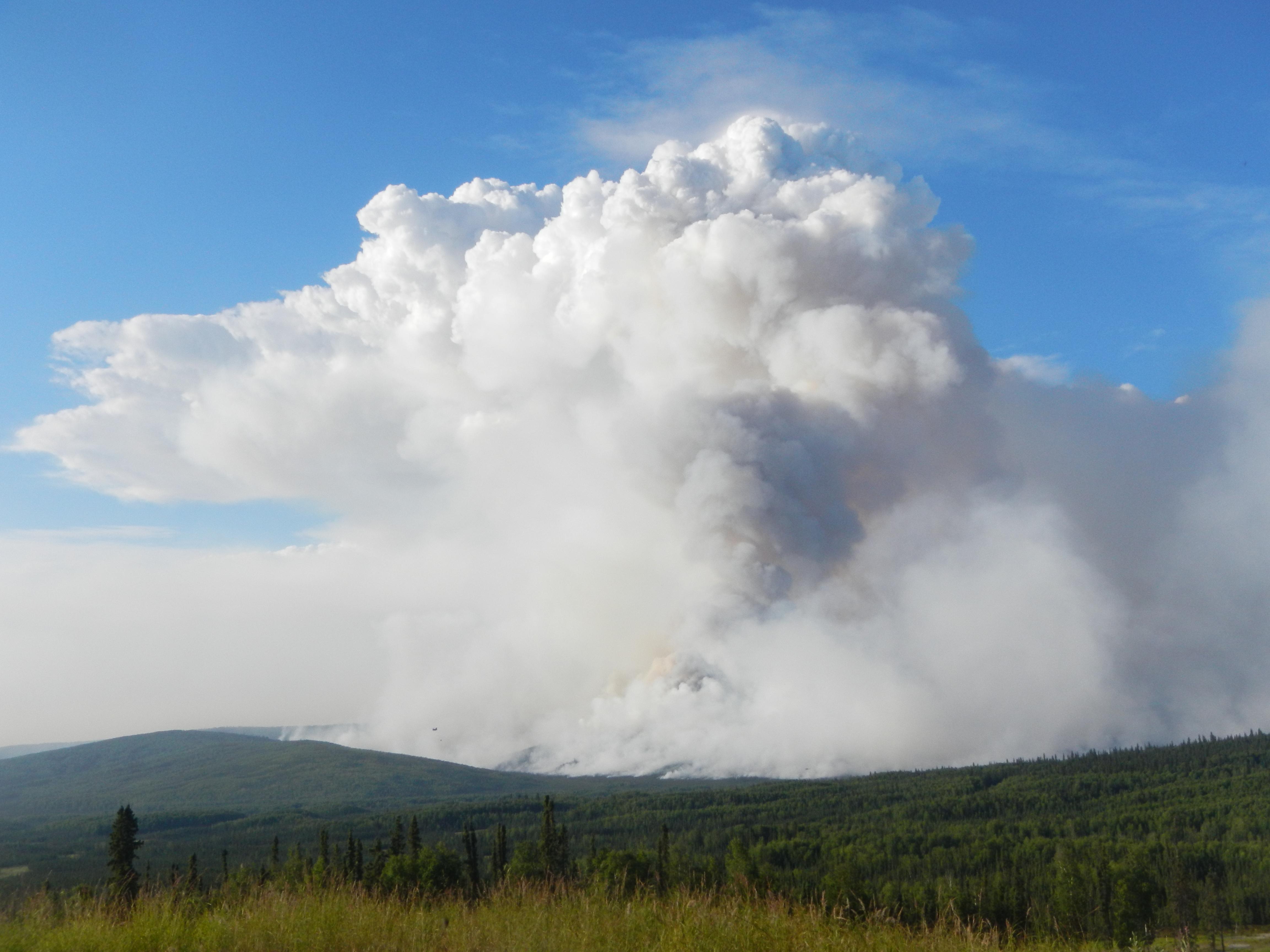 The plume of smoke above the Stuart Creek Fire