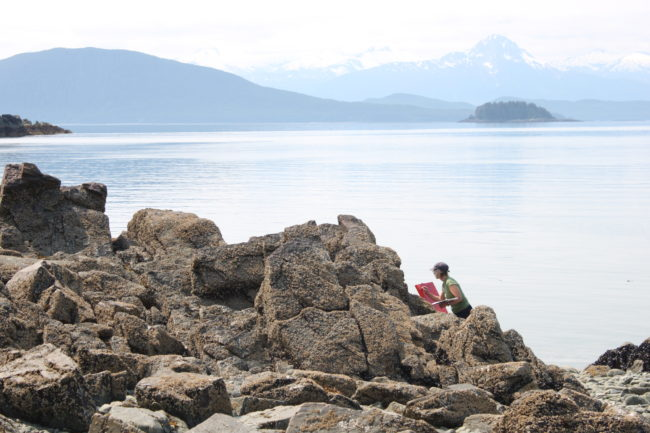 Constance Baltuck says she spends hours on the rocks painting. (Photo by Lisa Phu/KTOO)