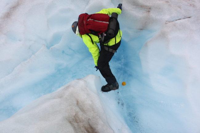 Discovery Southeast Naturalist Steve Merli drops the orange. (Photo by Lisa Phu/KTOO)