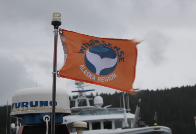 Participating Whale SENSE companies display an orange flag on their vessels. (Photo by Lisa Phu/KTOO)