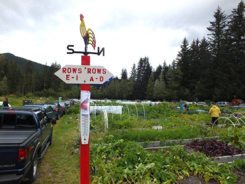 Juneau Community Garden