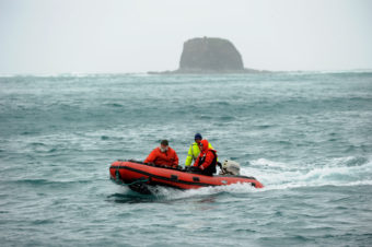 Biologist Jeff Williams, biologist Steve Ebbert and deck hand Andy Velsko return to the US Fish and Wildlife Service research boat R/V Tiglax after checking the conditions to land researchers on Buldir Island in the Aleutians during a trip from Adak Island to Attu Island on a weeklong research mission in southwestern Alaska, on Tuesday, June 2, 2015. Scientists on the R/V Tiglax conduct research in the Alaska Maritime National Wildlife Refuge. (Photo by Bob Hallinen / Alaska Dispatch News)
