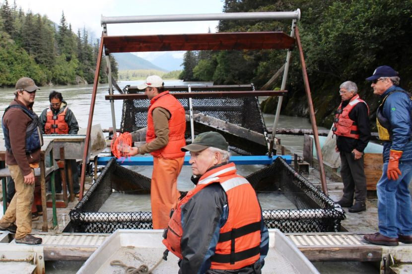 B.C. Mines Minister Bill Bennett,center, Lt. Gov. Byron Mallott, center right, and Fish and Game Commissioner Sam Cotton, right, visit a Taku River fish wheel in Augst, after ab stop at the Tulsequah Chief Mine. (Photo courtesy lieutenant governor's office)