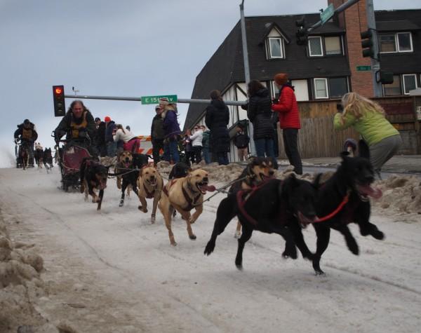 Teams race down Cordova hill on day three of the Fur Rondy Race Invitational. (Photo by Zachariah Hughes/KSKA)