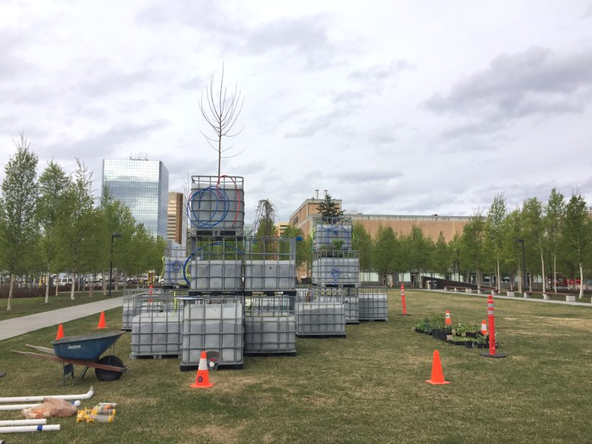 """Mary Mattingly's """"Arctic Food Forest,"""" a living sculpture that functions similar to a small-scale ecosystem, exhibited in front of the Anchorage Museum as part of """"The View From Up Here."""" (Photo Zachariah Hughes/Alaska Public Media)"""