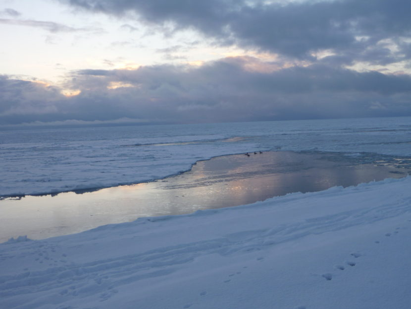 The view from Point Hope, early winter 2015. (Photo by Ellen Chenoweth/University of Alaska Fairbanks)