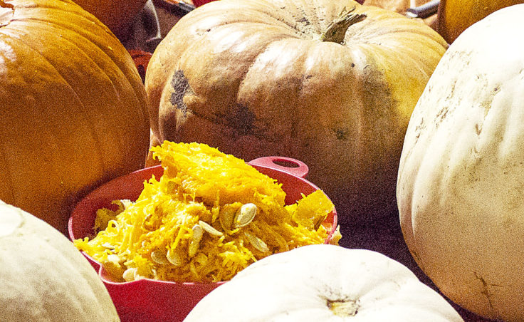 Pumpkins cover the work space at Juneau Makerspace in Lemon Creek on Monday, October 24, 2016. (Photo by Tripp J Crouse/KTOO)