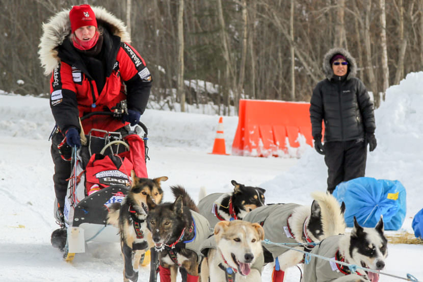 Aliy Zirkle coming into the checkpoint in Galena on Thursday. Zirkle has had to upend her race plans and declare a 24-hour rest in Galena because of sick dogs. (Photo by Zachariah Hughes, Alaska Public Media)