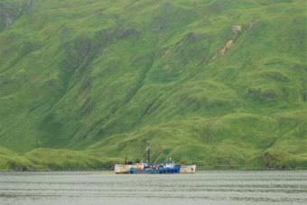 The F/V Akutan is still moored in Unalaska's Captains Bay. (Photo by Berett Wilber/KUCB)