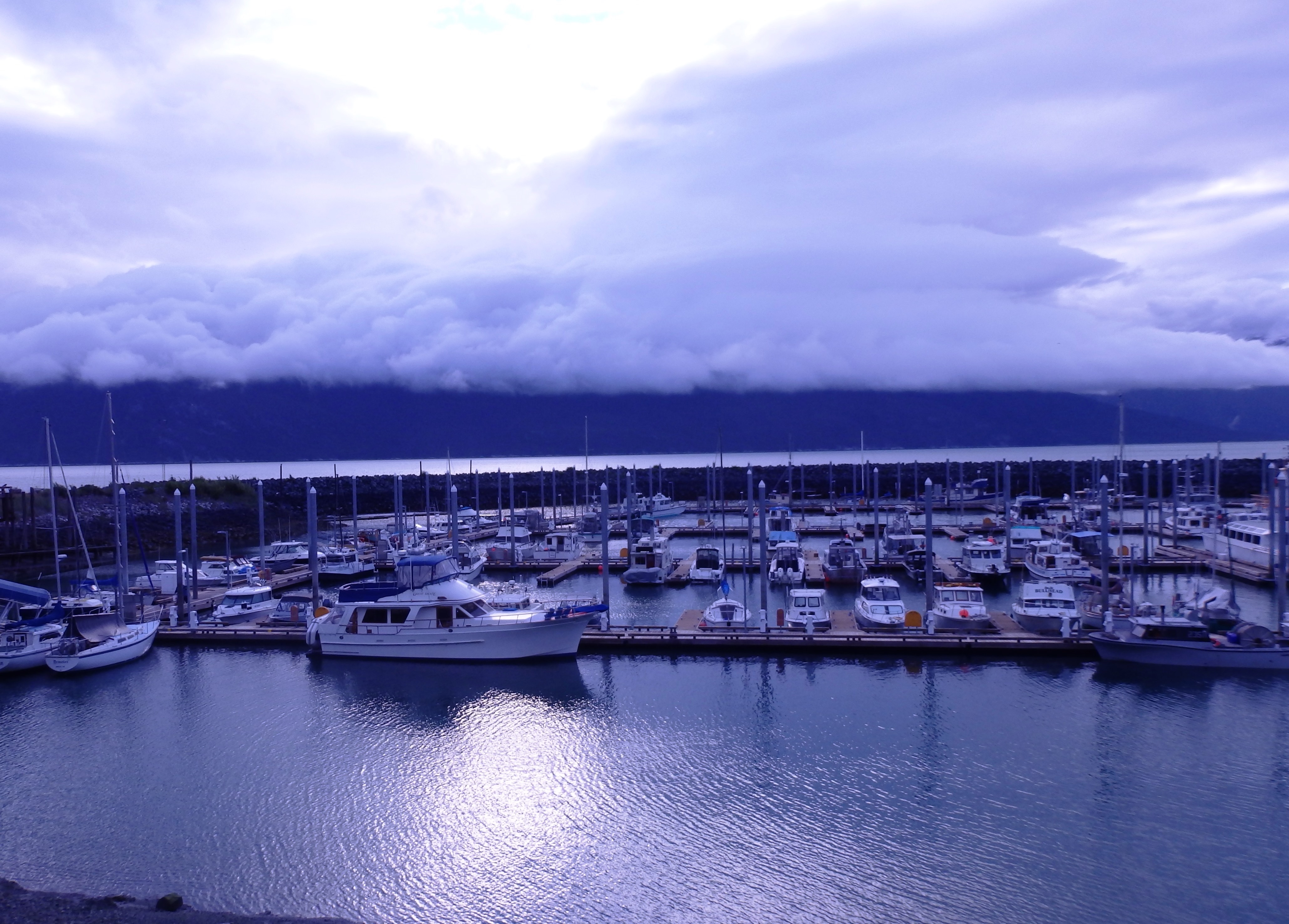 Commercial fishermen throughout the state, such as those in The Haines Portage Cove Harbor pictured here, received a letter warning of the dangers of opioids this summer. (Photo by Emily Files/KHNS)