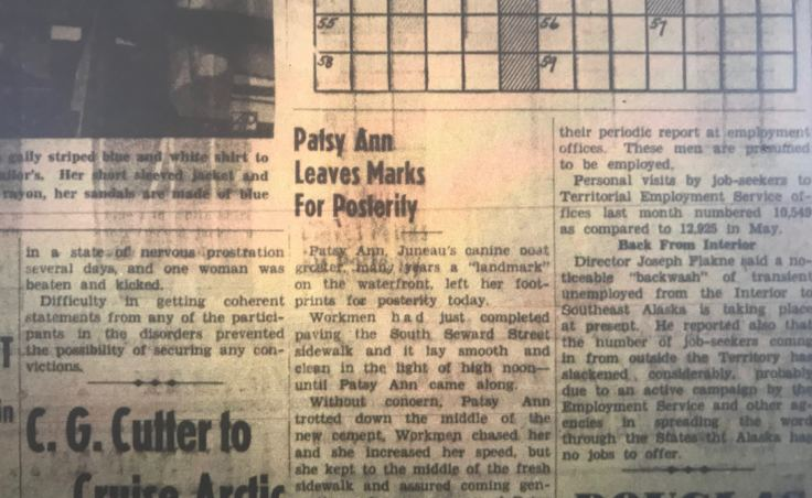 An article on page seven of the July 20, 1939, edition of The Daily Alaska Empire describes how the bull terrier Patsy Ann ran through wet cement on South Seward Street. Old copies of the newspaper are on microfilm at the Alaska State Library.