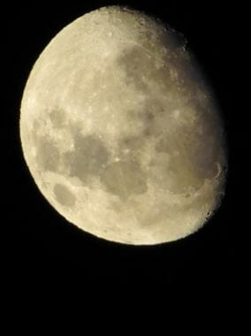 Almost 80 percent of the moon's face is visible on Saturday, Jan. 27, (Photo courtesy Samantha Adams)