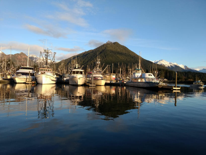Sitka fishing vessels in harbor on Jan. 18, 2018. (Photo by Jacob Resneck/KTOO)