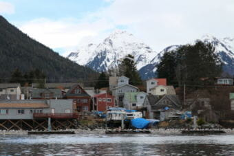 The Sitka sac roe herring fishery takes place every spring in Sitka Sound. (Photo by Emily Russell/KCAW)