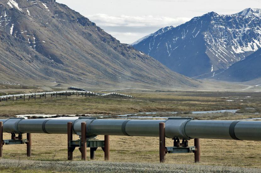 The Trans-Alaska Pipeline runs alongside the Dalton Highway near the Toolik Field Station on June 9, 2017, in the North Slope Borough. (Photo by Rashah McChesney/Alaska's Energy Desk)