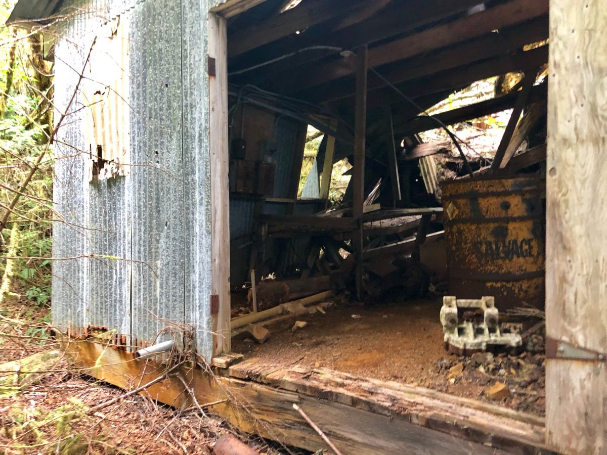 A tin shack stands at the site of the Londevan Prospect near Beaver Falls. (Photo by Lim Neimeyer/KRBD)