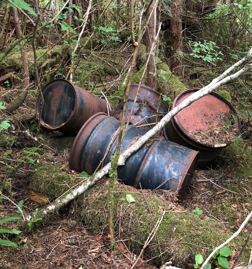 Rusty barrels sink into the ground at the Londevan Prospect site. (Photo by Liam Neimeyer/KRBD)