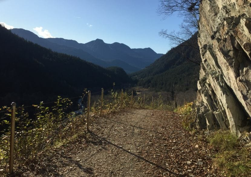 The view along part of Perseverance Trail. (Photo by Adelyn Baxter/KTOO)