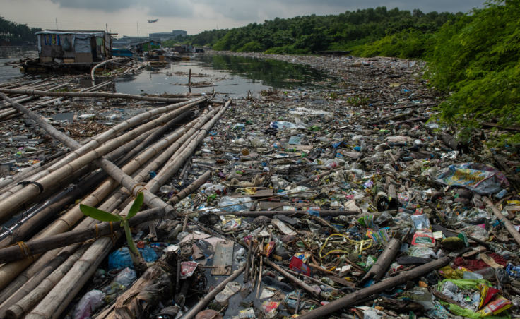 Freedom Island is typical of so many islands in Southeast Asia that become magnets for floating trash.