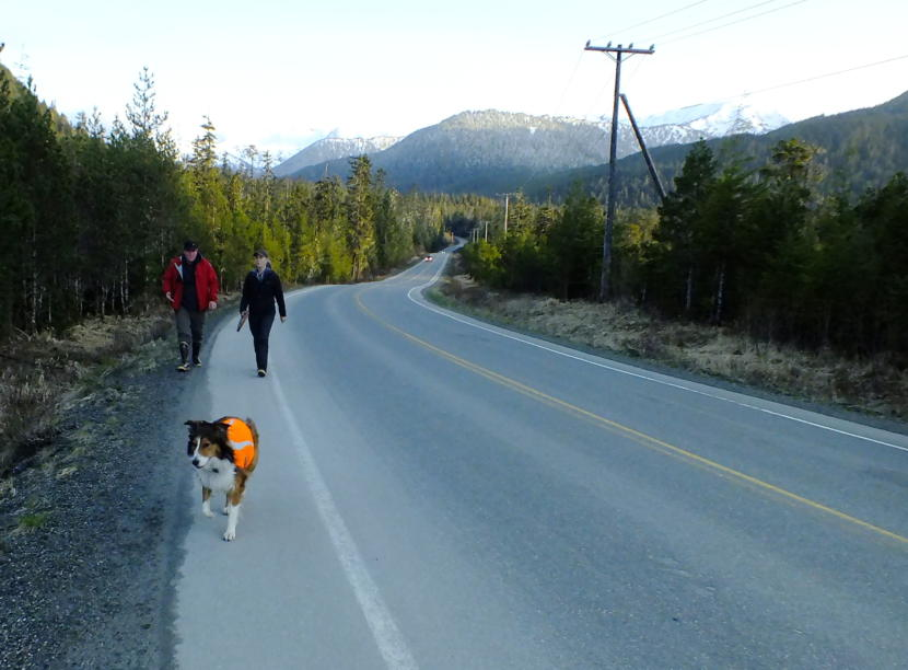 SEADOGS' Mark Sanders and Rebecca Albert return from an evening training session along with her dog Tilli, a 3 year old Collie. (Photo by Matt Miller/KTOO)