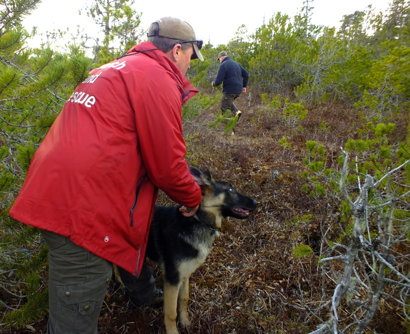 SEADOGS' Liam Higgins holds on to Oskar, his 5-month-old German Shepherd, as a friend volunteers to run off into the muskeg with the dog's favorite toy. (Photo by Matt Miller/KTOO)