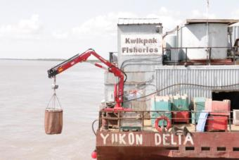 Kwik'Pak Fisheries in Emmonak, Alaska on July 15, 2019. (Photo by Anna Rose MacArthur/KYUK)