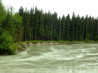View from Meander Way of Mendenhall River as water levels begin to rise on July 14, 2019.