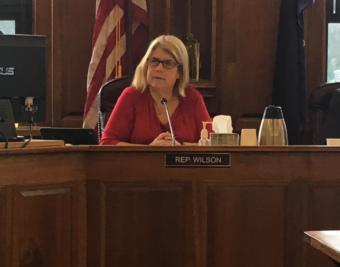 Rep. Tammie Wilson (R-North Pole) speaks during a House Finance Committee meeting in June. She left the House majority caucus on Thursday. (Photo by Andrew Kitchenman/KTOO and Alaska Public Media)