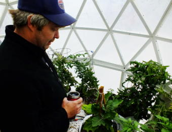 In this picture taken in early June 2019, tomatoes, peppers, and other vegetables thrive in the scratch-built geodesic greenhouse that Tom Lafollette made at the Annex Creek Hydroelectric Facility in Taku Inlet. Lafollette explains that he's set up an automated watering and venting system to keep the plants watered and the greenhouse ventilated.