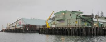 Ocean Beauty Seafoods permanently closed its Petersburg plant in 2018 and is selling the property for $3.4 million. (Photo courtesy Joe Viechnicki/KFSK)