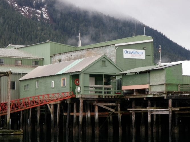 The Petersburg Fisheries seafood plant, owned by Icicle Seafoods is and where the company got its start in 1965. (Photo courtesy KFSK)