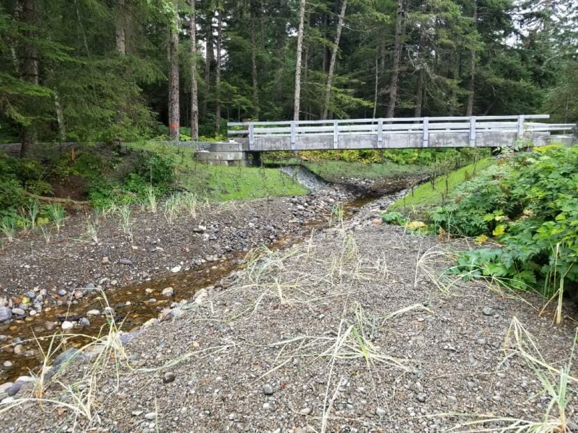 A new bridge, pictured here in 2018, spans a creek that salmon run up in the U.S. Forest Service's Lena Beach Recreation Area in Juneau.