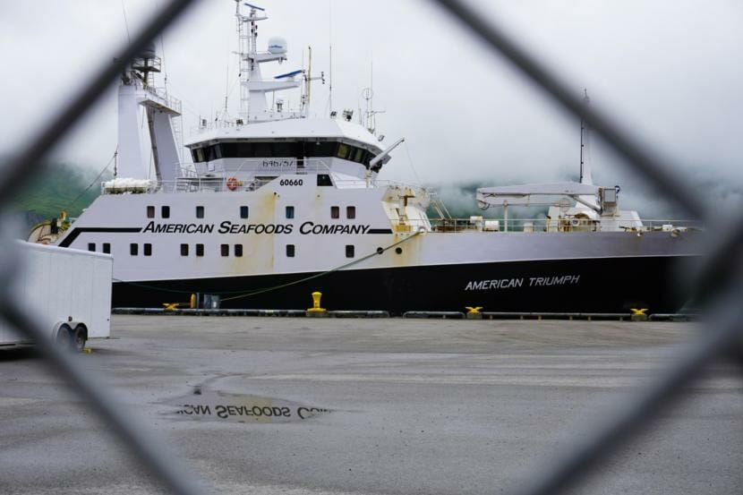 The American Triumph — a 285-foot factory trawler, with an onboard processing plant — sits in the Port of Dutch Harbor on Friday, waiting for clinic staff to test the remaining members of its 119-person crew. (Photo by Hope McKenney/KUCB)