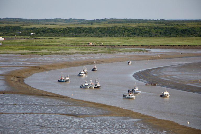 Several fishing boats in Bristol Bay