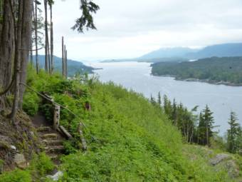 Portions of the Tongass National Forest can be seen from Ketchikan's Rainbird Trail.