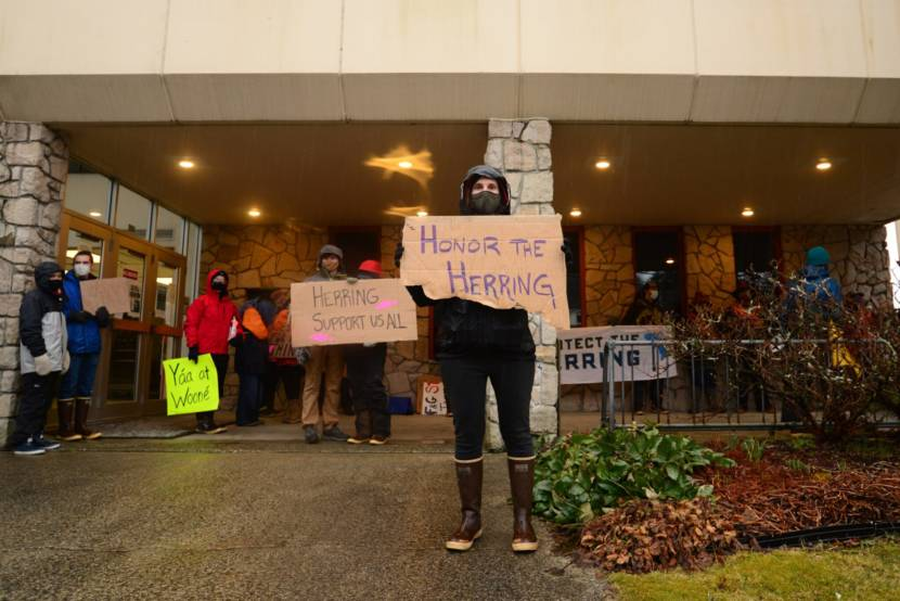 Demonstrators gathered outside of Sitka Courthouse earlier this week as a commercial herring fisher is slated to begin. (KCAW/Berett Wilber)