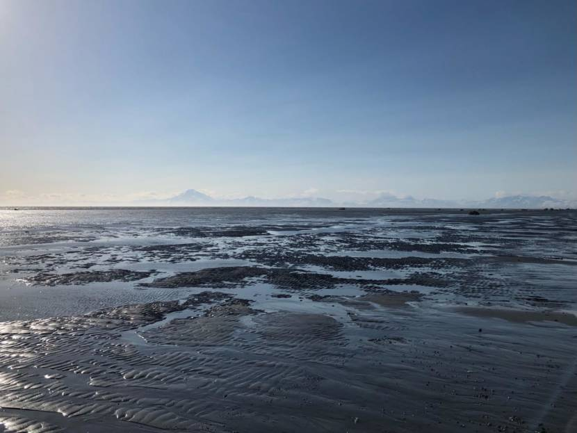 Nikiski eyed for Cook Inlet tidal energy project