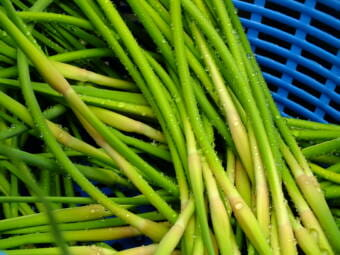 Washed garlic scapes
